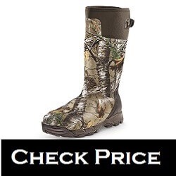 Best Snake Boots