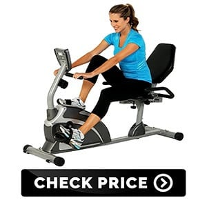 Extended Capacity Recumbent Bike