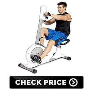 Exercise Dual Motion Recumbent Bike