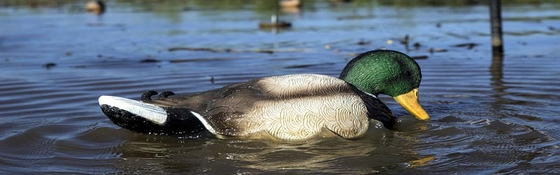 Best Motion Duck Decoys