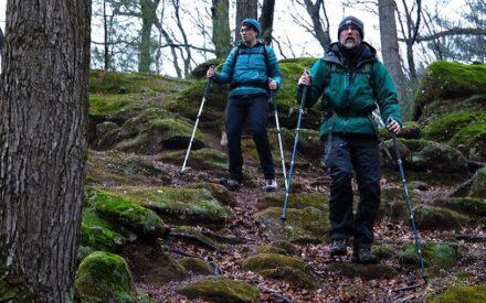 Trekking Poles for Hunting