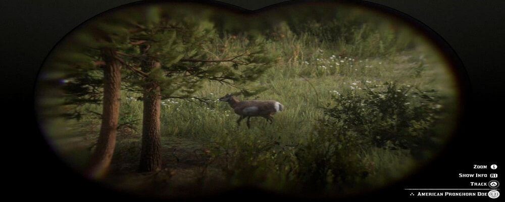 Why Use Binoculars for Hunting?