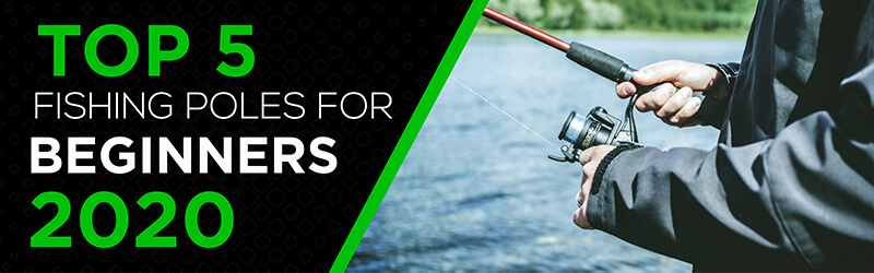 Best Fishing Poles for Beginners